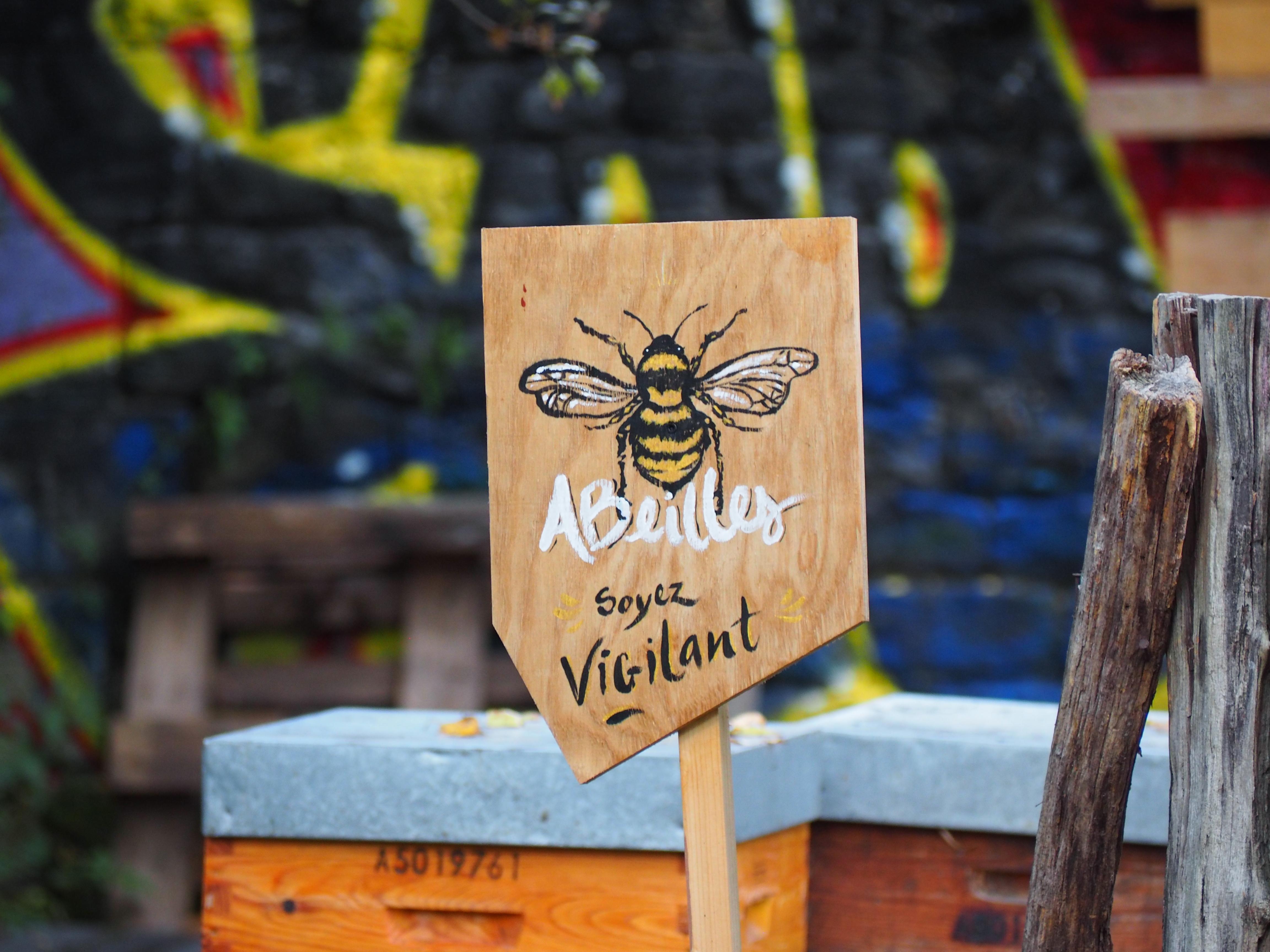 L'apiculture urbaine