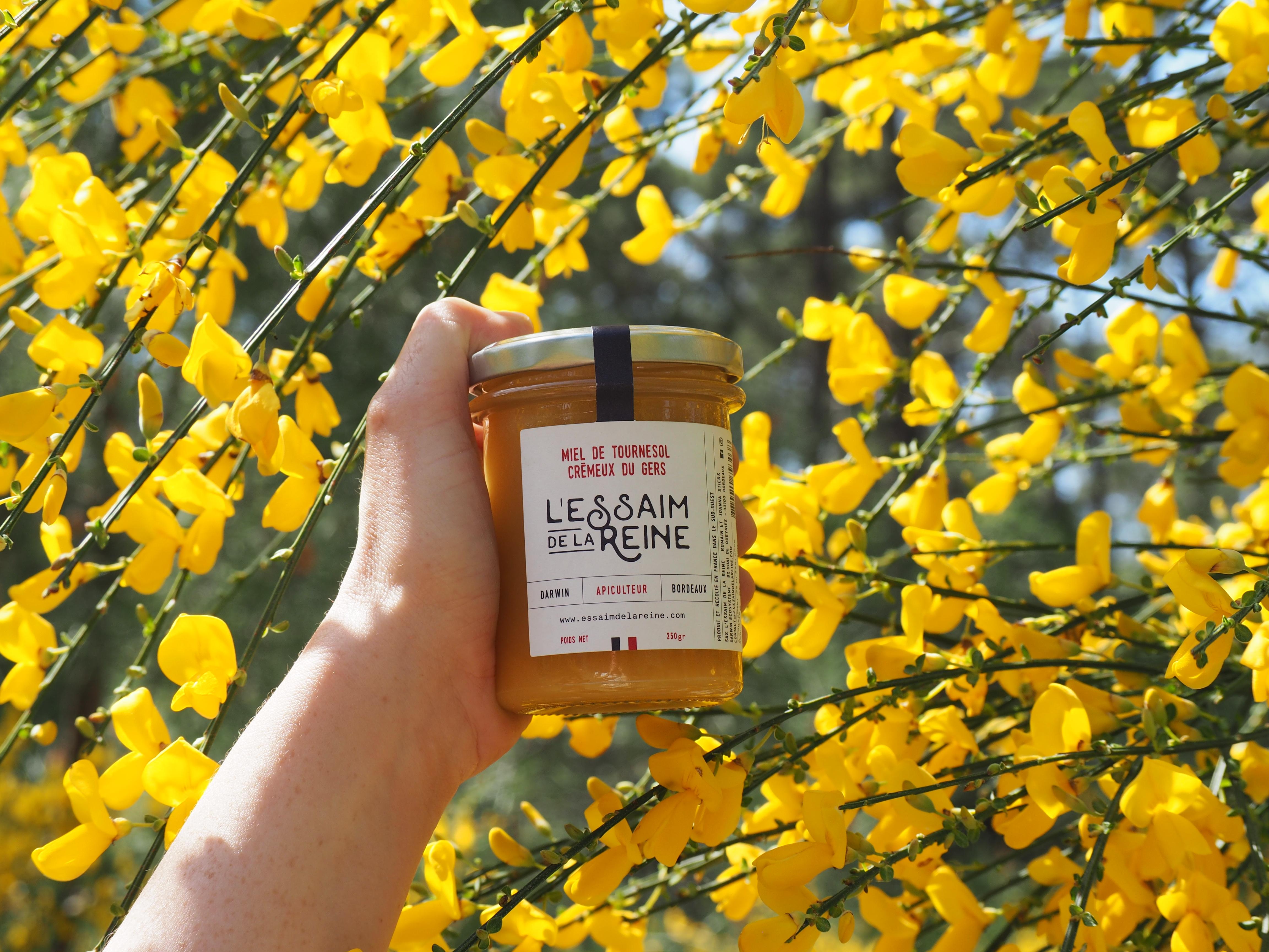 miel de tournesol du Gers